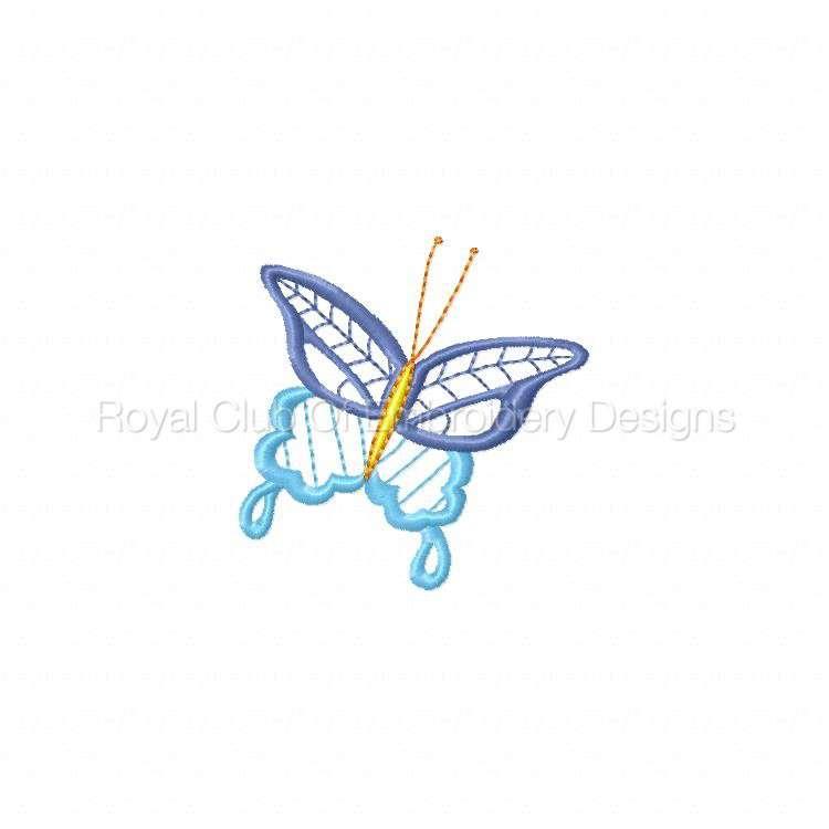 butterfly_08.jpg
