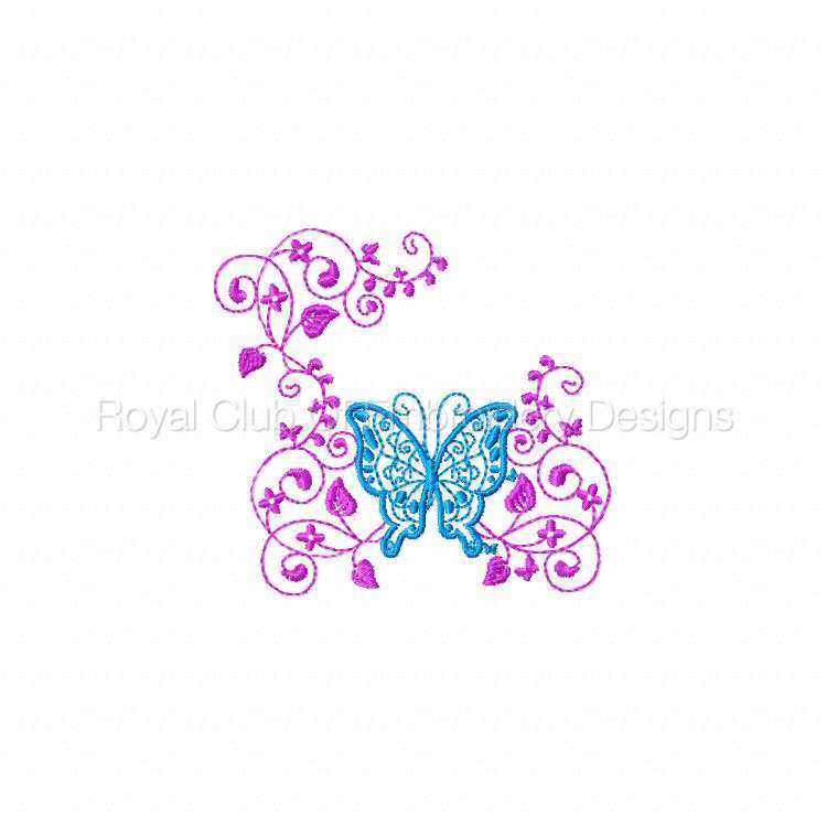 butterflycandb_07.jpg