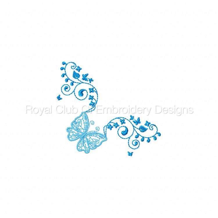 butterflycandb_10.jpg