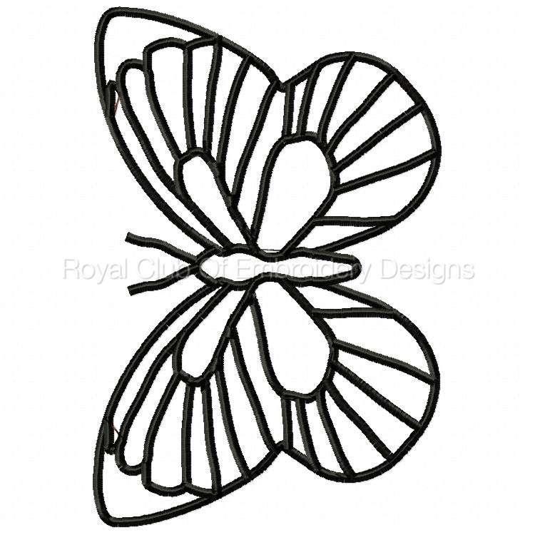 butterflys_6.jpg