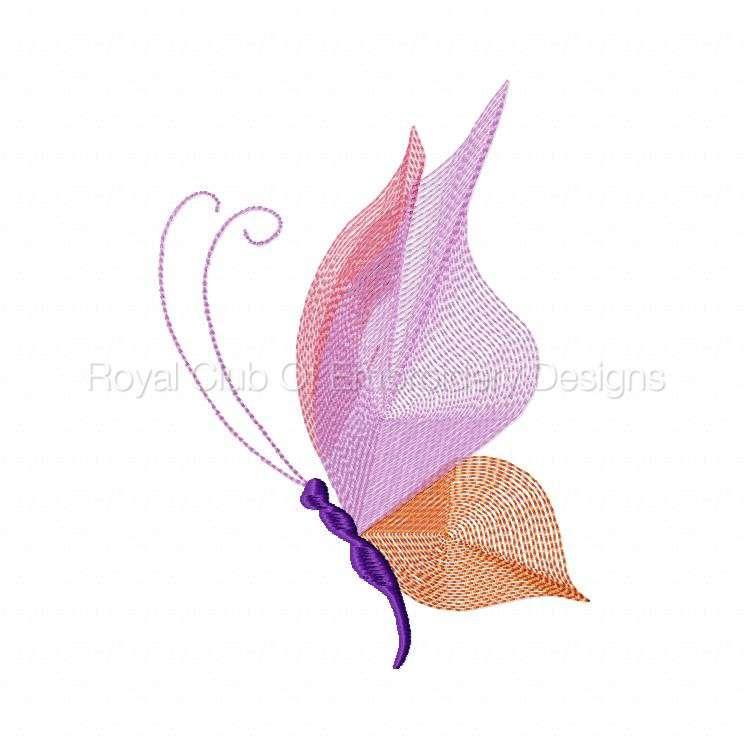butterflythreads_06.jpg