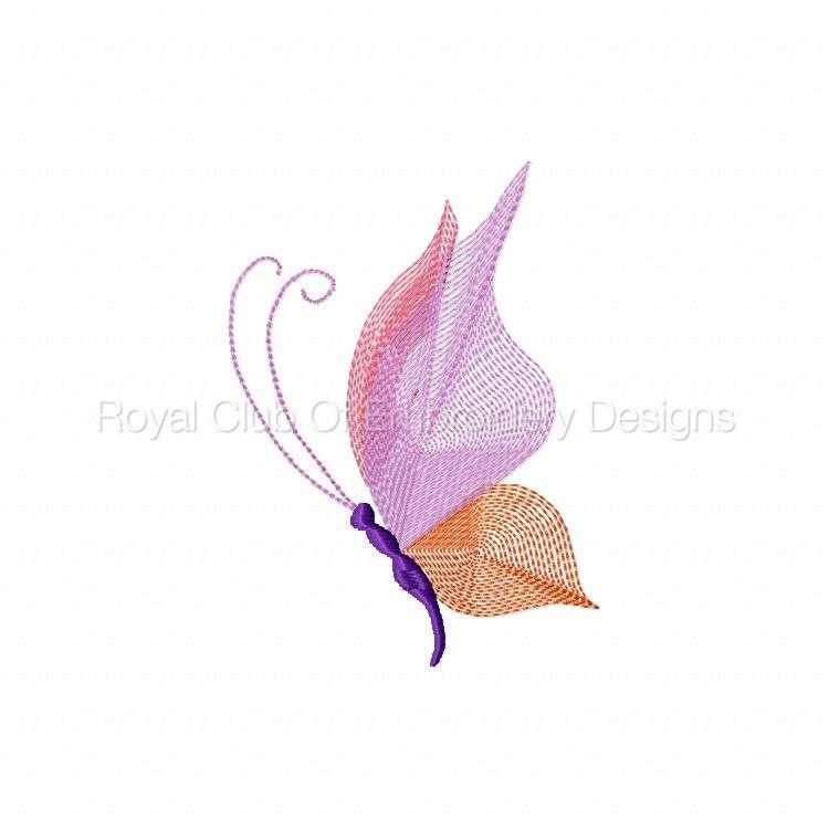 butterflythreads_08.jpg