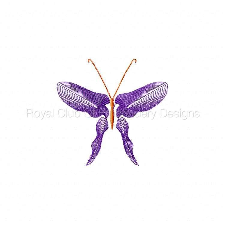 butterflythreads_13.jpg