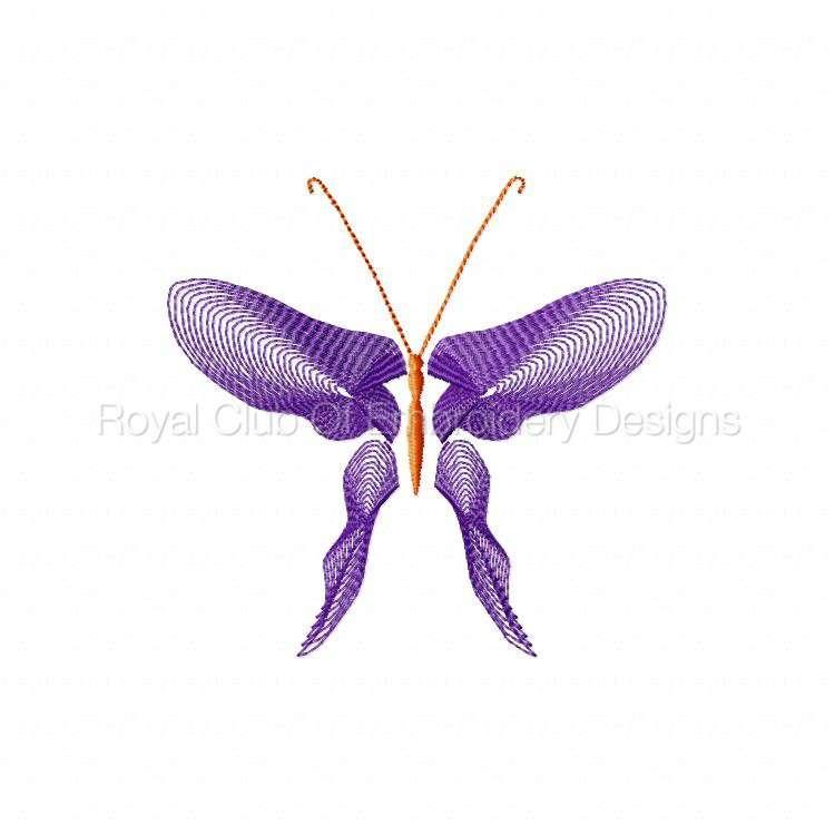 butterflythreads_15.jpg