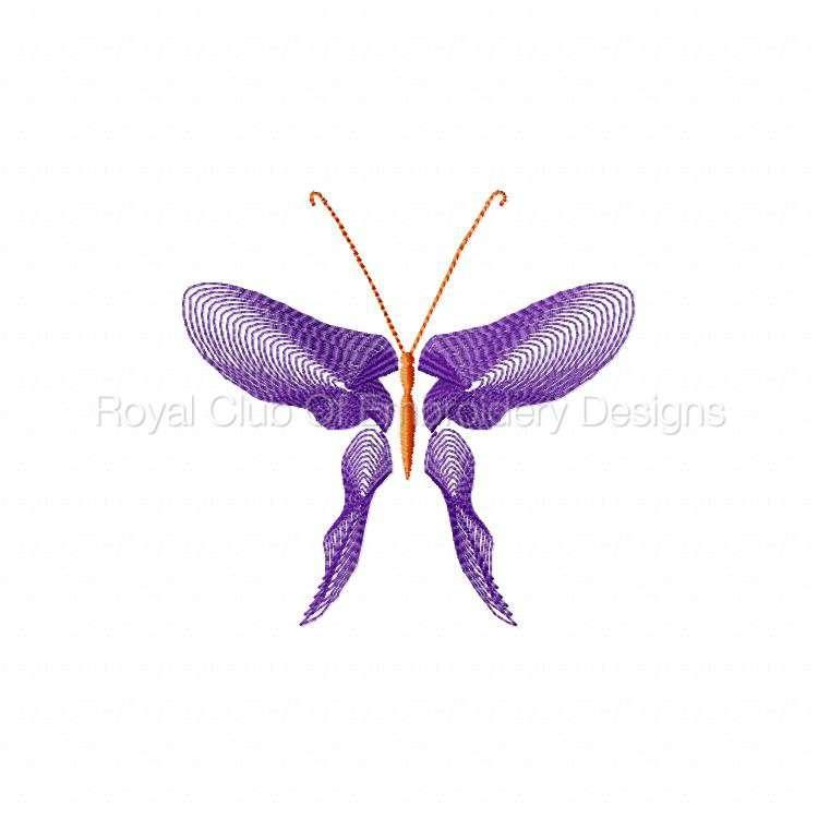 butterflythreads_16.jpg