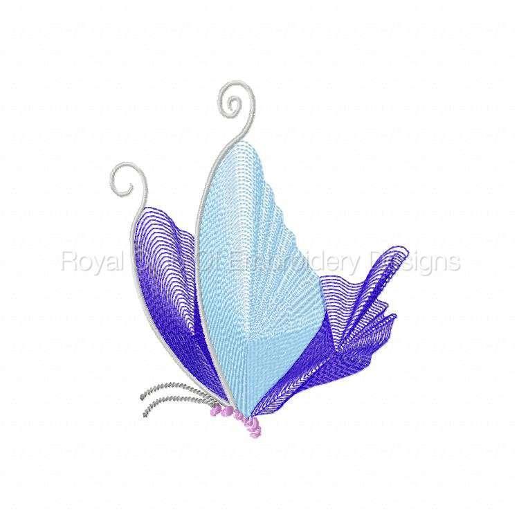 butterflythreads_19.jpg