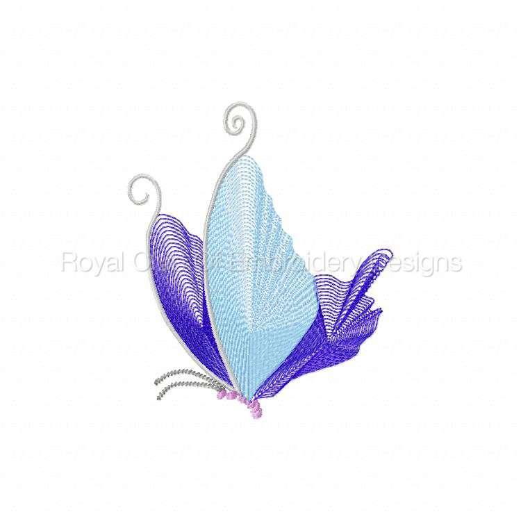 butterflythreads_20.jpg