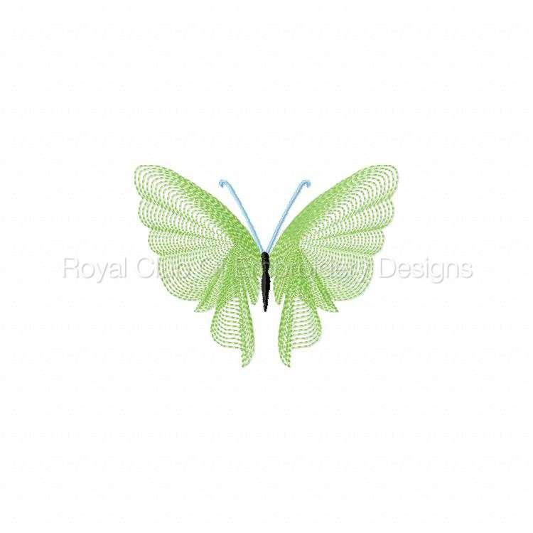 butterflythreads_21.jpg