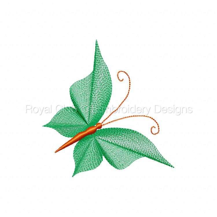 butterflythreads_27.jpg
