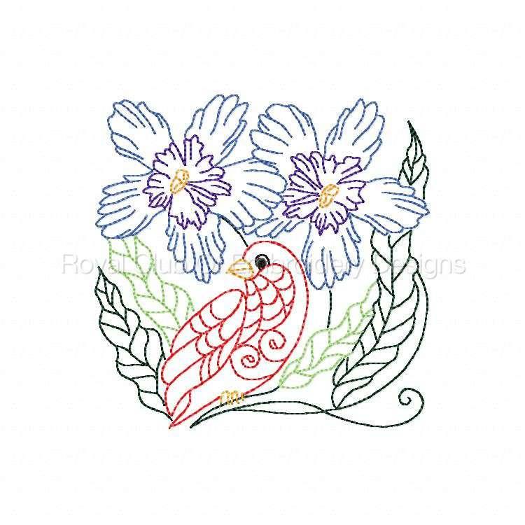 colorlinebirds_06.jpg