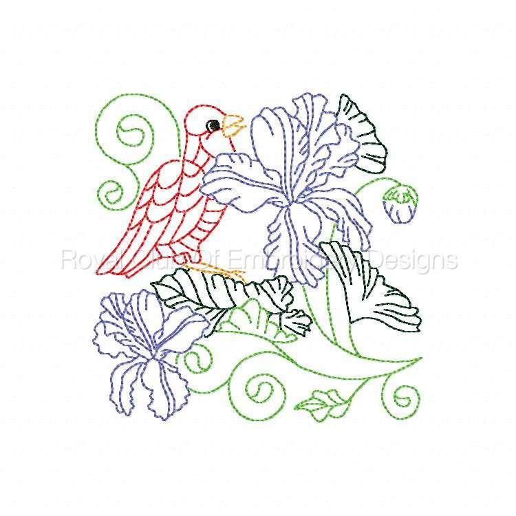 colorlinebirds_10.jpg