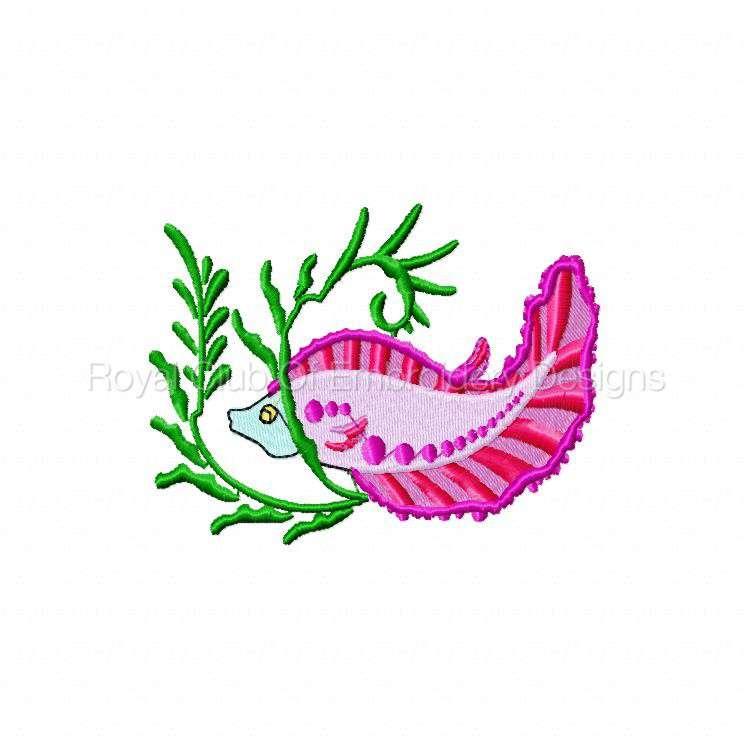 colortropicalfish_01.jpg