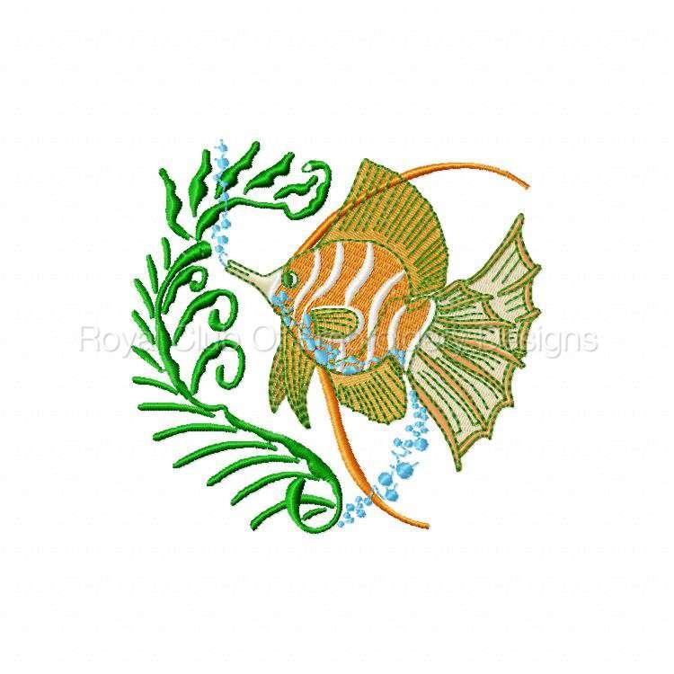 colortropicalfish_02.jpg