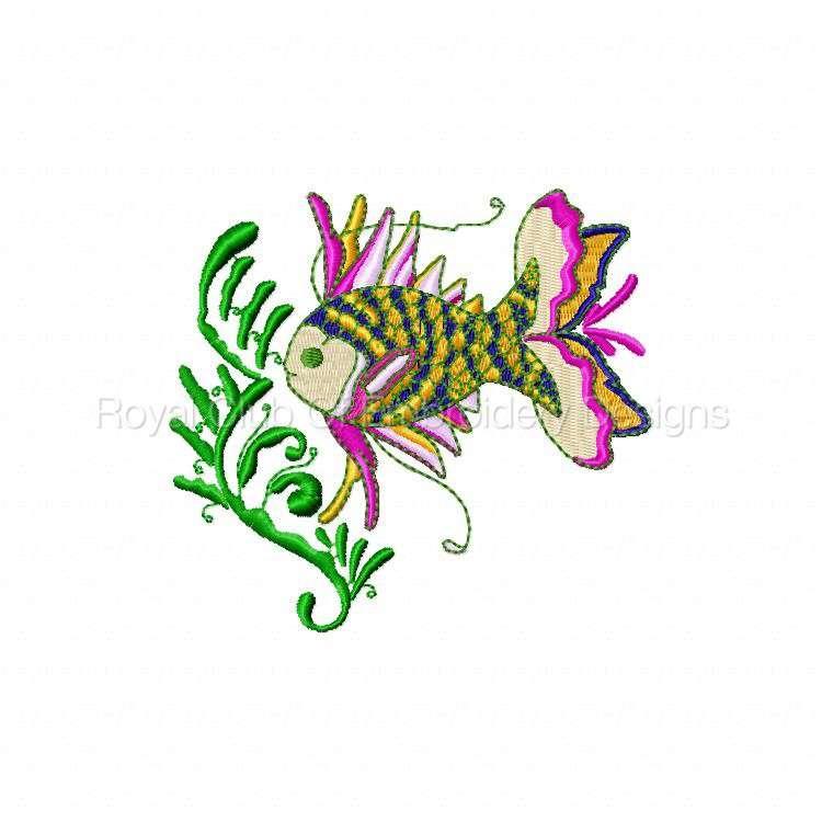 colortropicalfish_05.jpg
