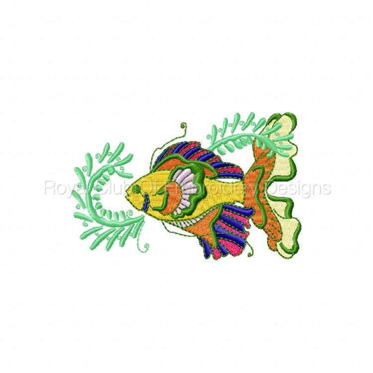 colortropicalfish_07.jpg
