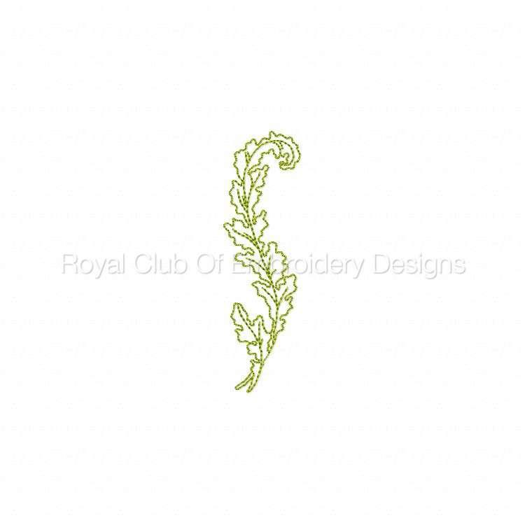 curlyleaves_03.jpg