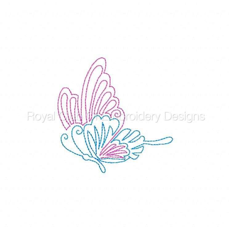 cwbutterflies4x4_02.jpg