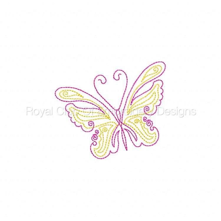 cwbutterflies4x4_03.jpg