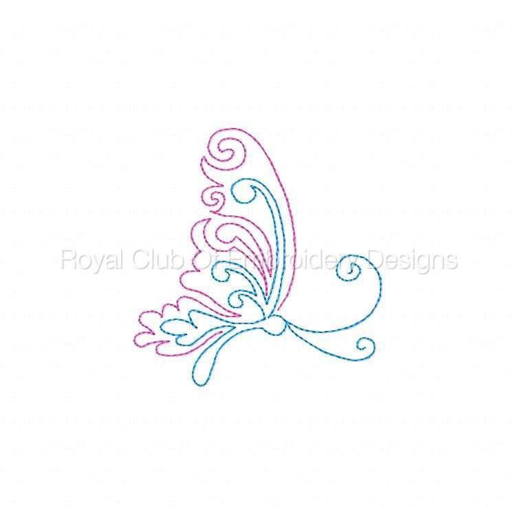 cwbutterflies4x4_04.jpg