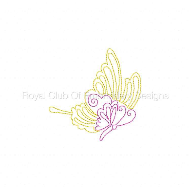 cwbutterflies4x4_05.jpg