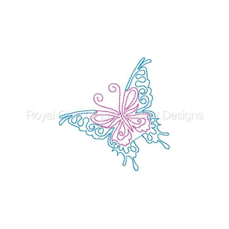 cwbutterflies4x4_06.jpg