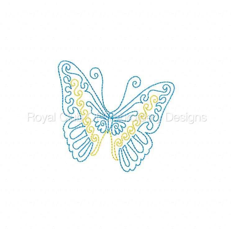 cwbutterflies4x4_07.jpg