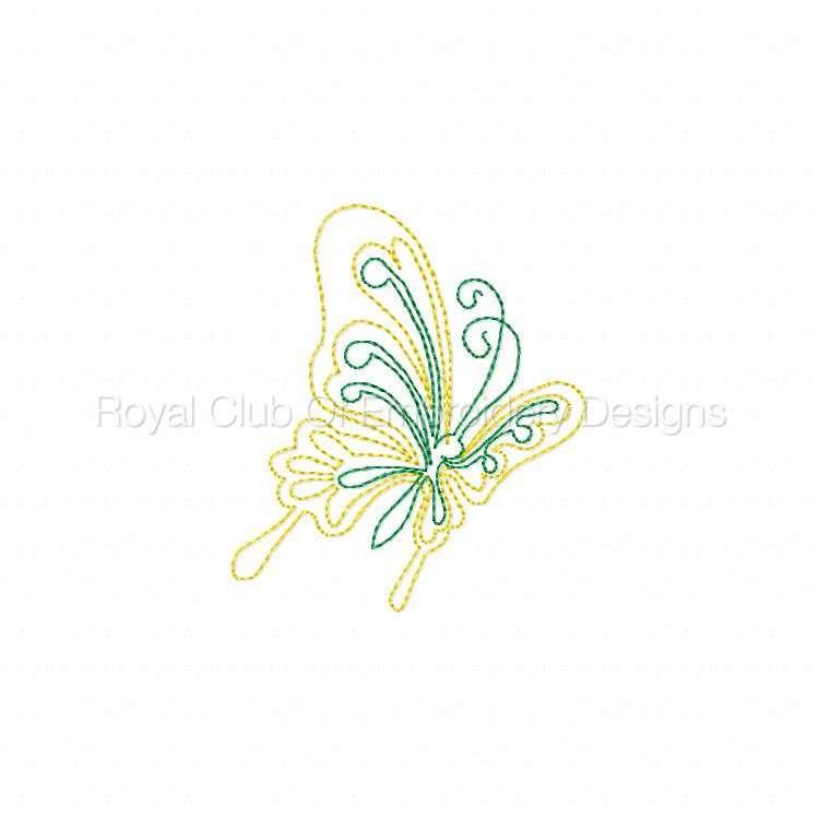 cwbutterflies4x4_08.jpg