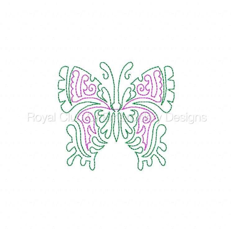 cwbutterflies4x4_09.jpg