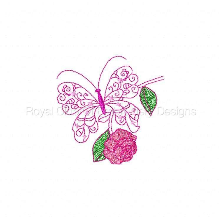 cwbutterflies_01.jpg