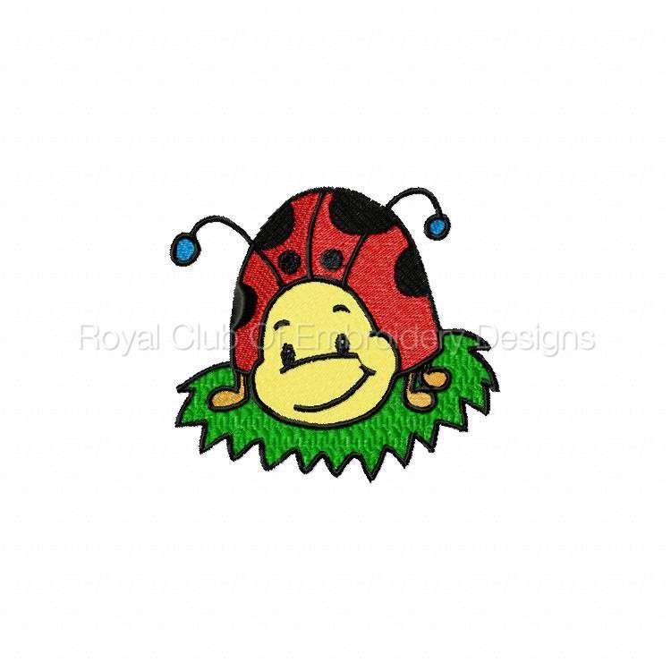 ddcoolladybugs_03.jpg