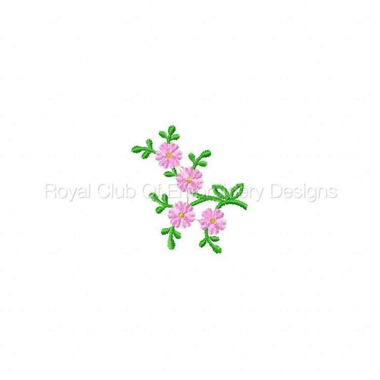 delicateflorals_1.jpg