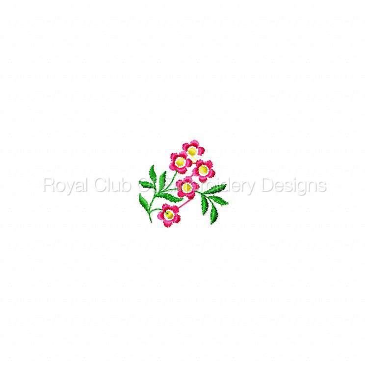 delicateflorals_2.jpg