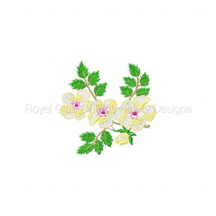 delicateflorals_6.jpg