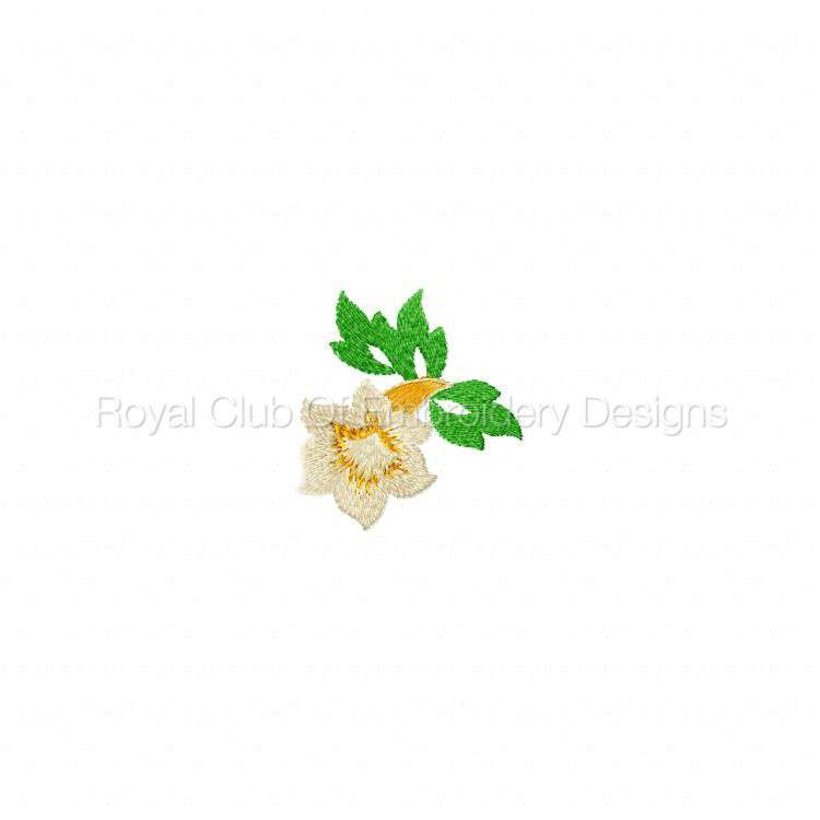 delicateflorals_7.jpg