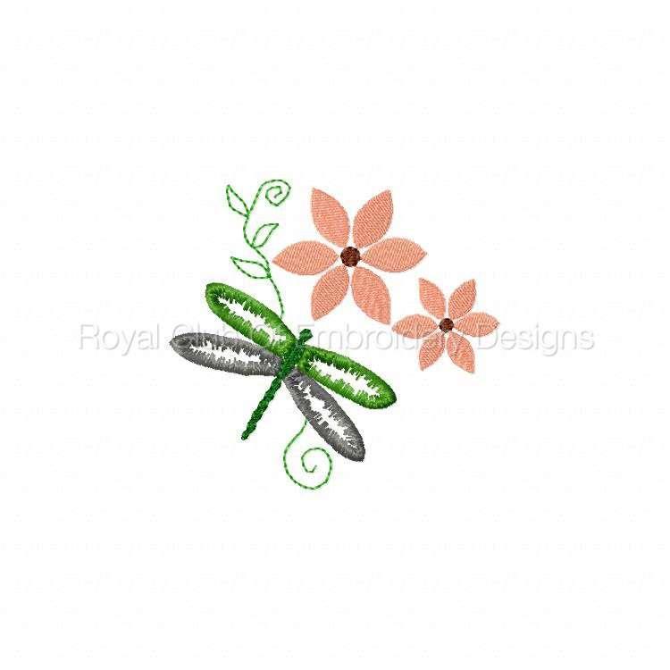 dragonflyoutlines_05.jpg