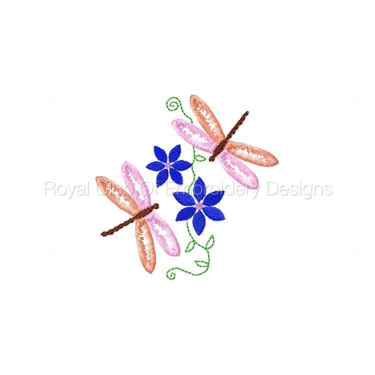 dragonflyoutlines_13.jpg