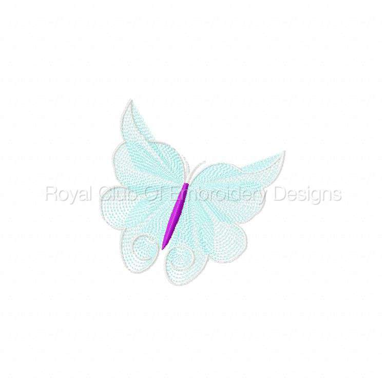elegantlacybflies_04.jpg