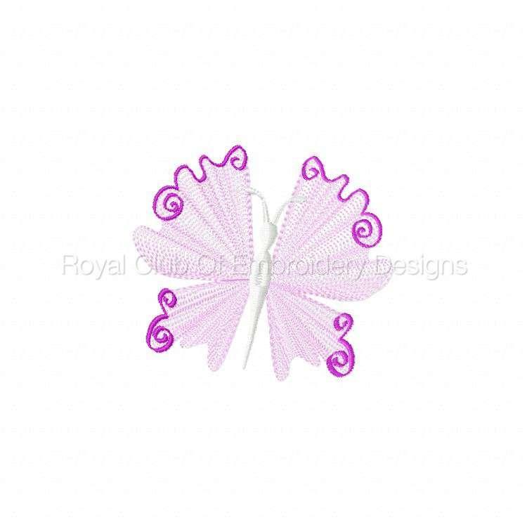 elegantlacybflies_05.jpg