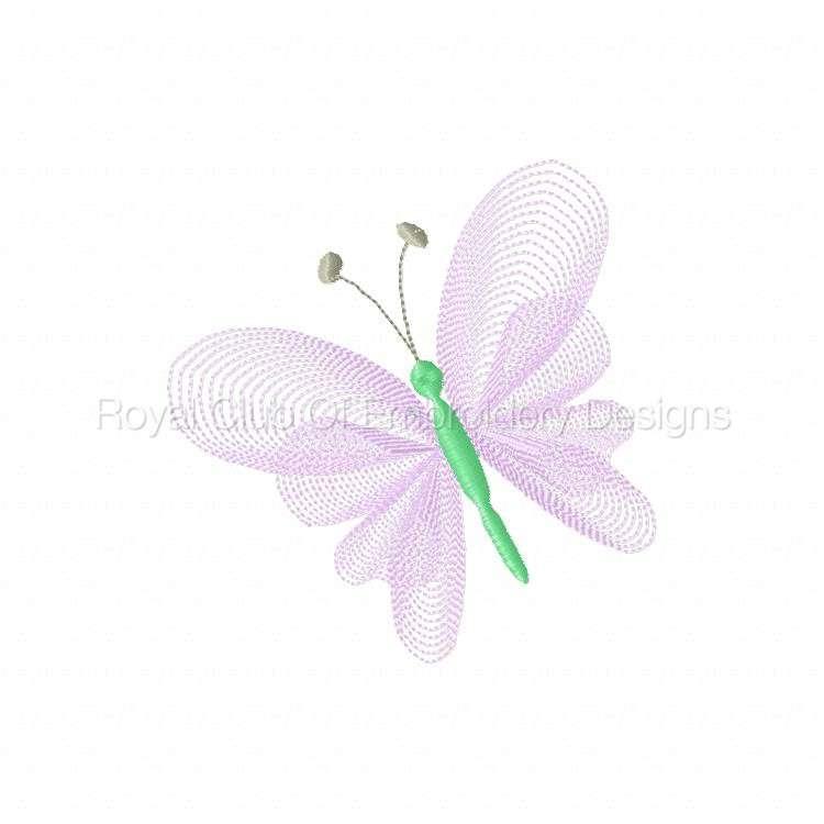 elegantlacybflies_06.jpg
