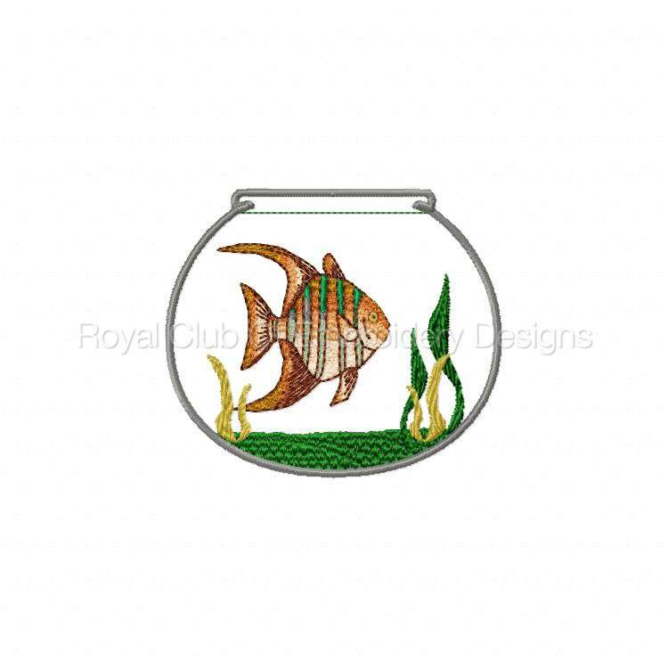fishbowl_01.jpg