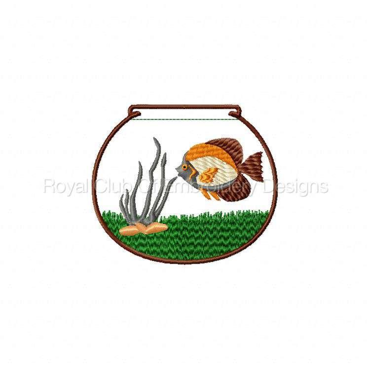 fishbowl_08.jpg