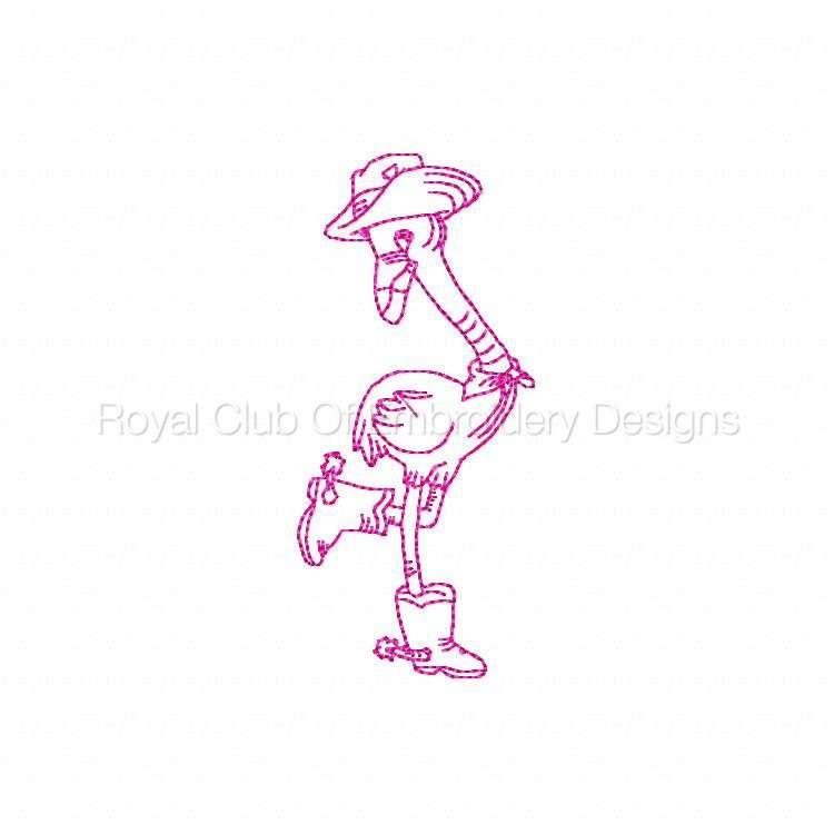flamingocowboysrw_02.jpg