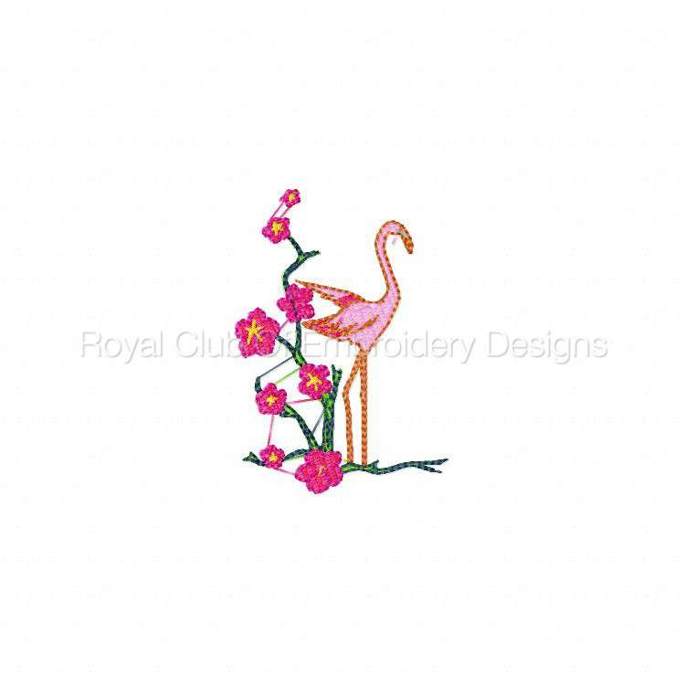 flamingos_08.jpg