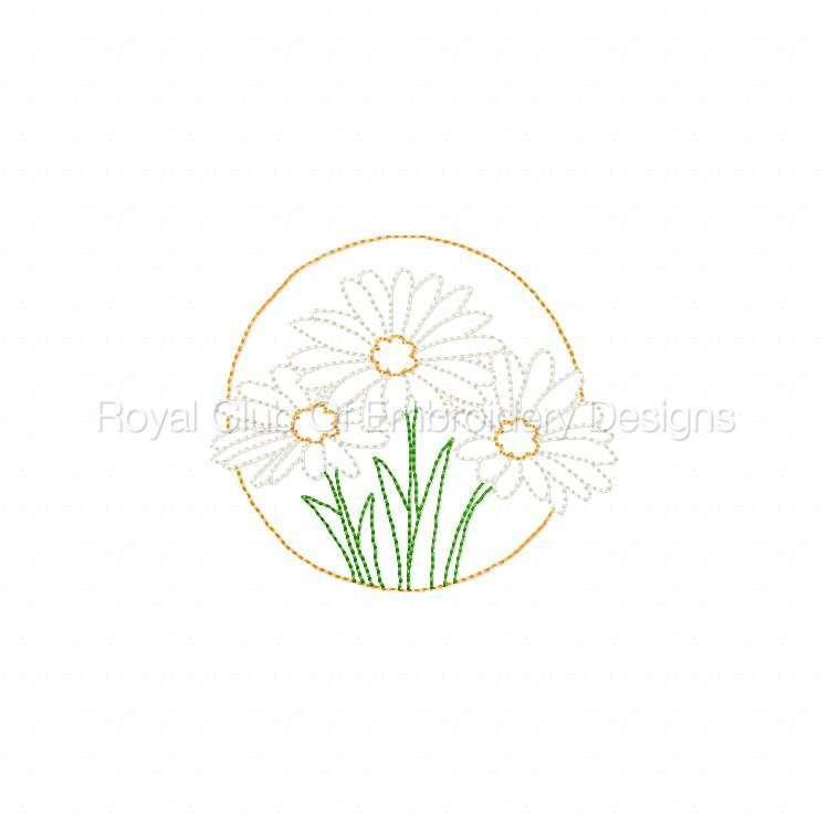 floralcircles_3.jpg