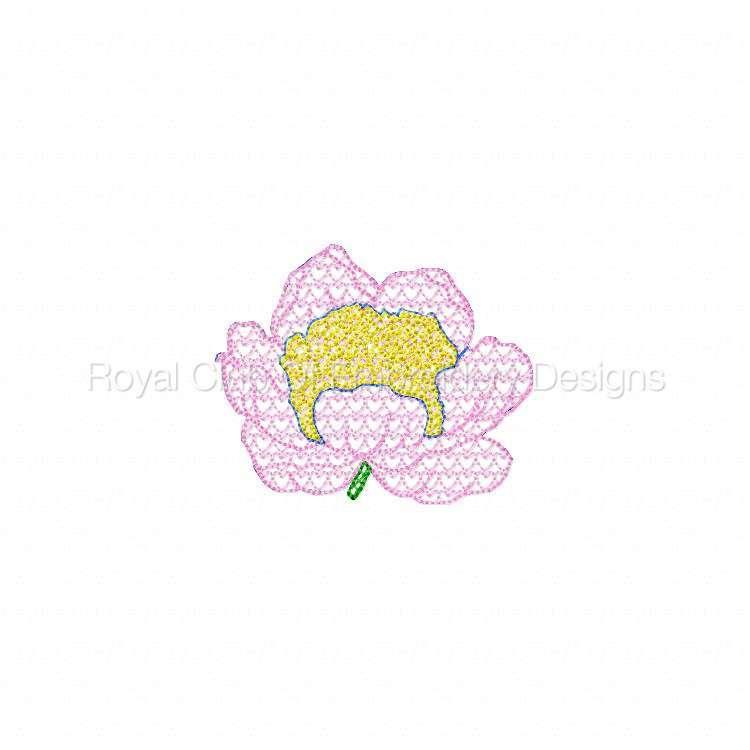 floralmylar_04.jpg