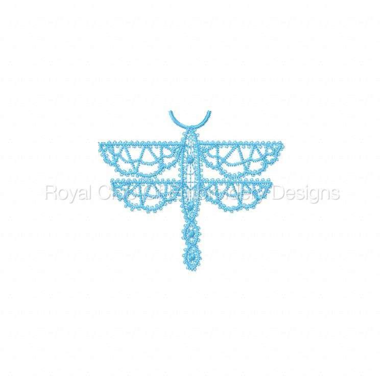 fsldragonflies_02.jpg