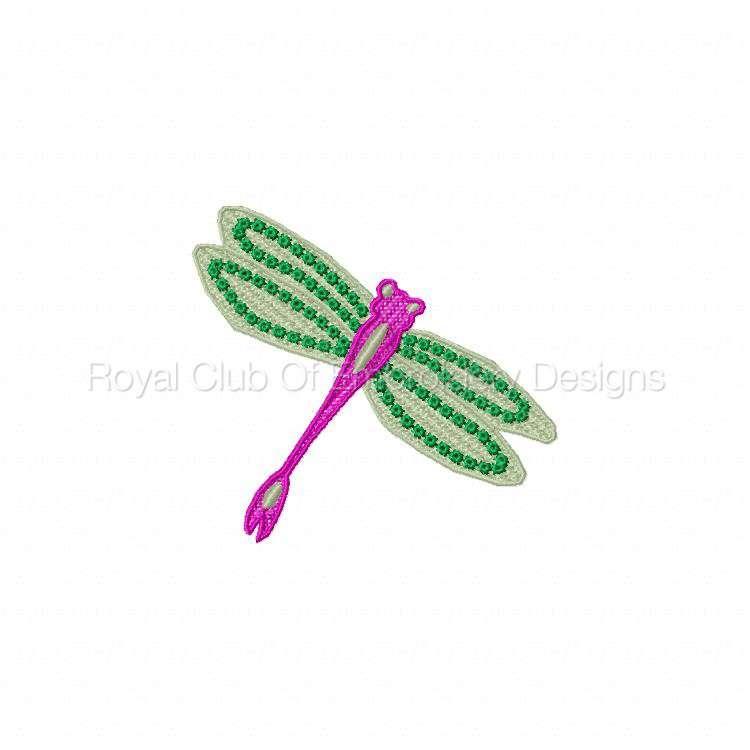 fsldragonflies_04.jpg