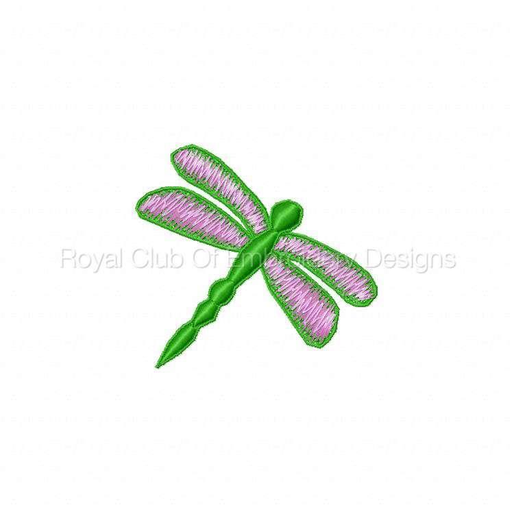 fsldragonflies_05.jpg