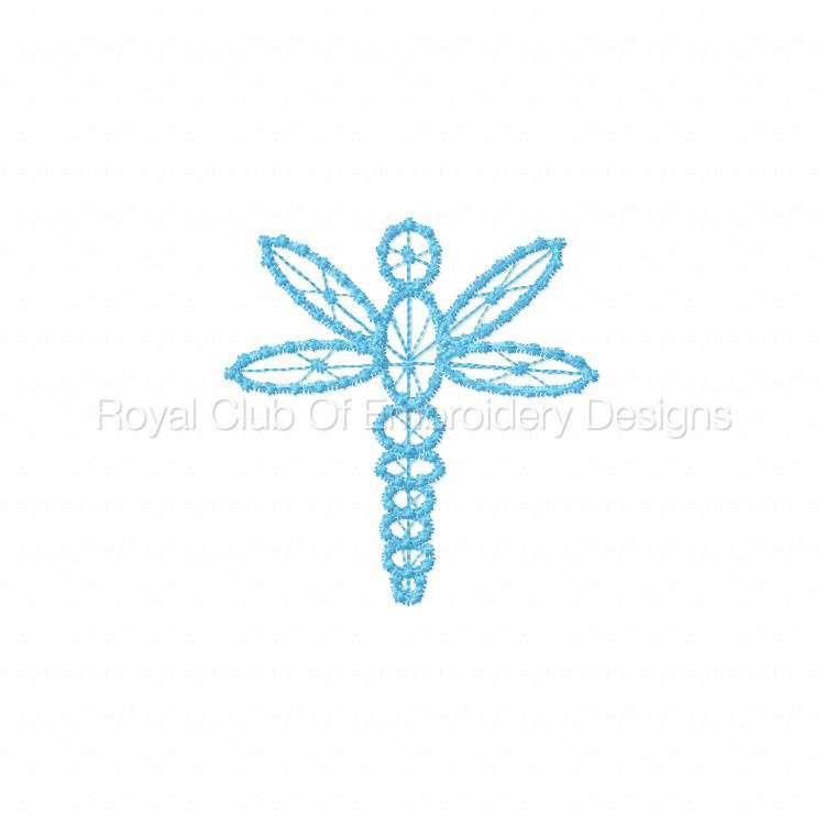 fsldragonflies_09.jpg