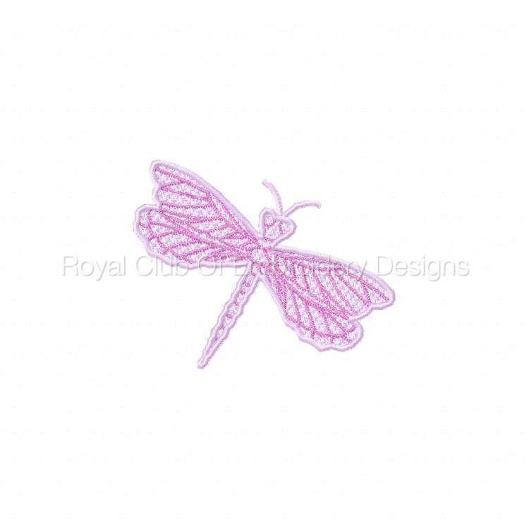 fsldragonflies_10.jpg